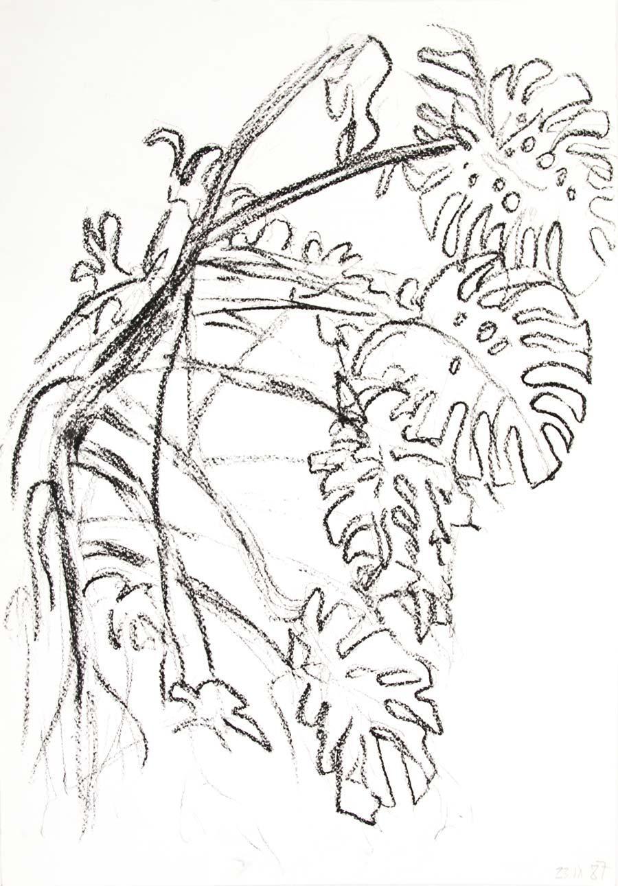 """23.IX.87"", 1987, 42x29,5cm black chalk on paper"