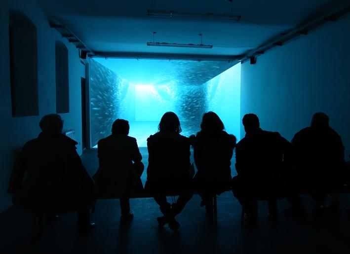 Ausstellungsansicht ANDREA BOŽIĆ & JULIA WILLMS: SPECTRA, Kunstraum am Schauplatz, 2015