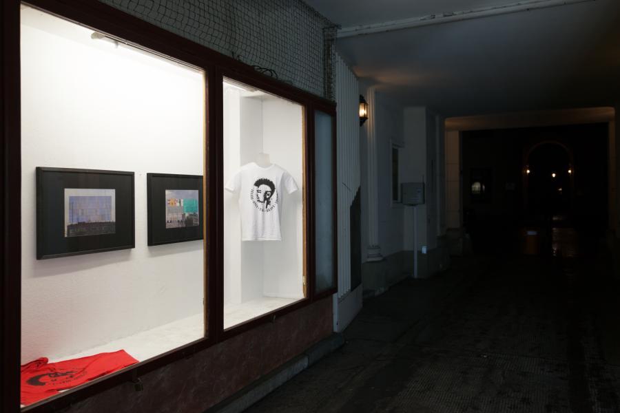 Installation, Bjørn Segschneider, Display Window, Praterstrasse 42